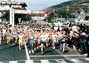 4.2.4 The All-Japan Seto Inland Sea Turtle Full Marathon.jpg